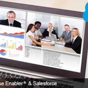 Salesforce.com Integration Software