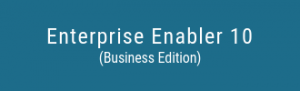 Enterprise-Enabler-10-Business